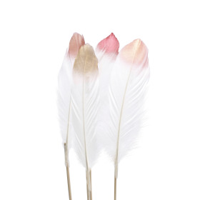 Divine Feathers 18cm on 50cm stick assorted x4