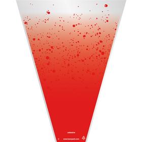 Celestine 19x14x4in red