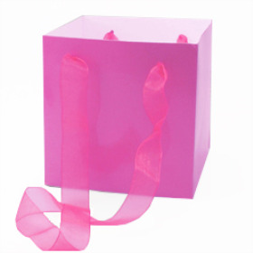 Carrybag Glossy 16x16x16cm pink
