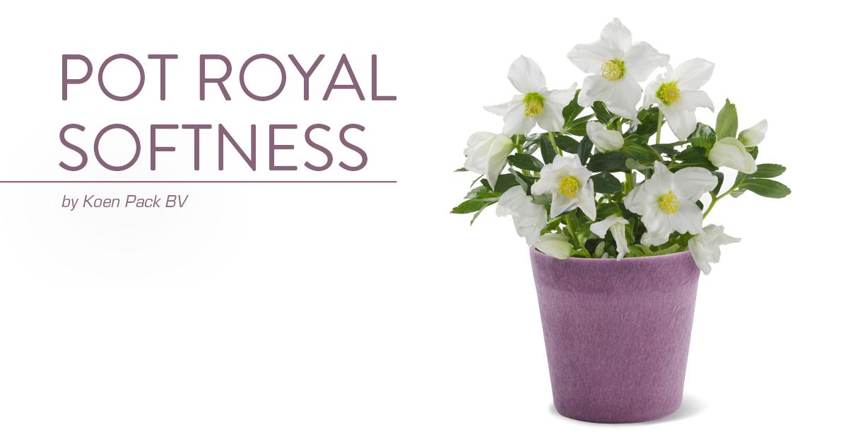 Pot Royal Softness