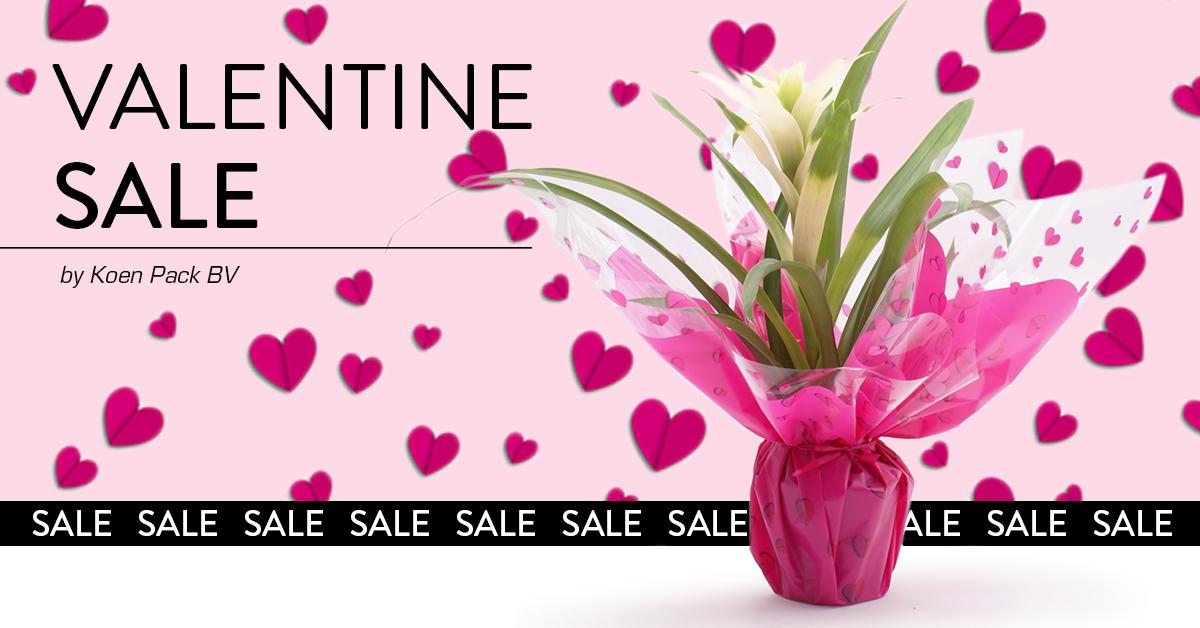Valentijne Sale