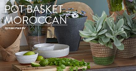 Pot Moroccan
