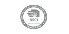 BSCI at Koen Pack